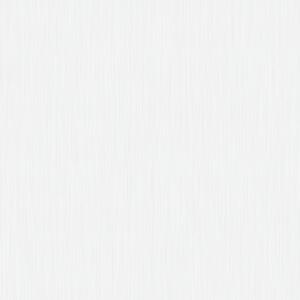 Begonia_4.jpg